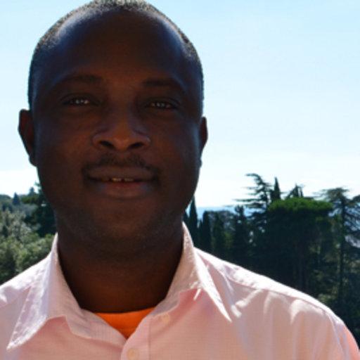 Dr Kareem Olayinka Idowu