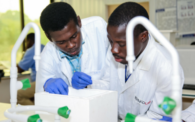 2020 Call for Applications: Intra-Africa Mobility Grants for Junior Researchers (supported by BMBF and AvH)